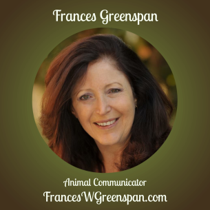 Frances Profile photo