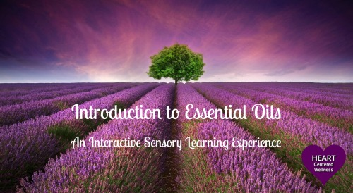 Essential Oils 101 COVER